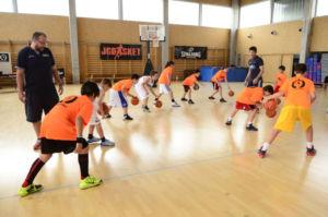 Campus baloncesto. Entrenamiento bote minibasket
