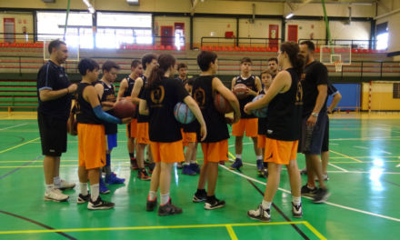 Asesoramiento y control para los jóvenes entrenadores