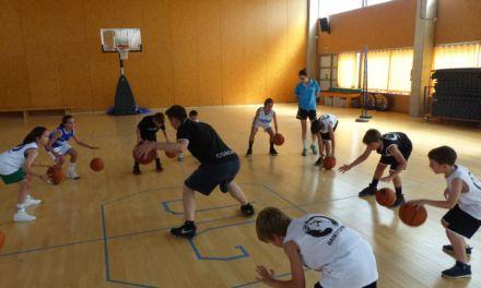 Claves del Baby Basket (II). Una evolución continua